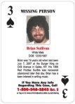 Brian Sullivan-Missing